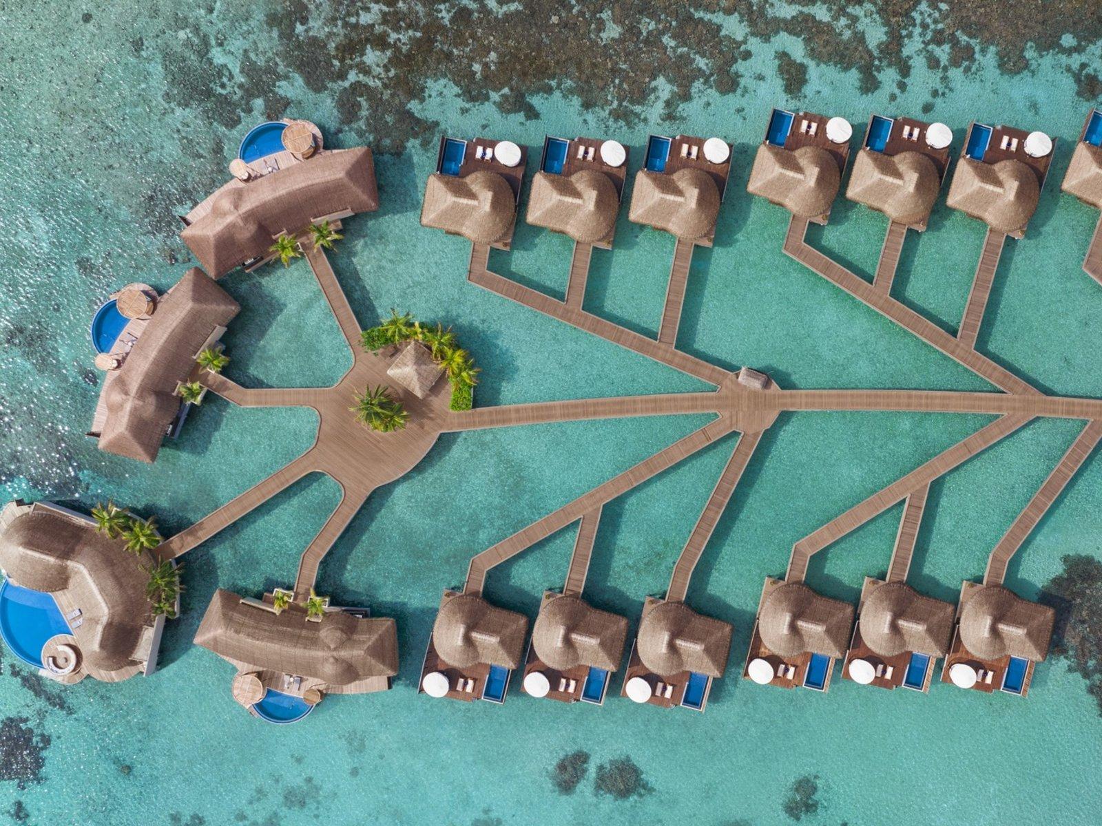 Wohnbeispiel Extreme WOW Ocean Haven