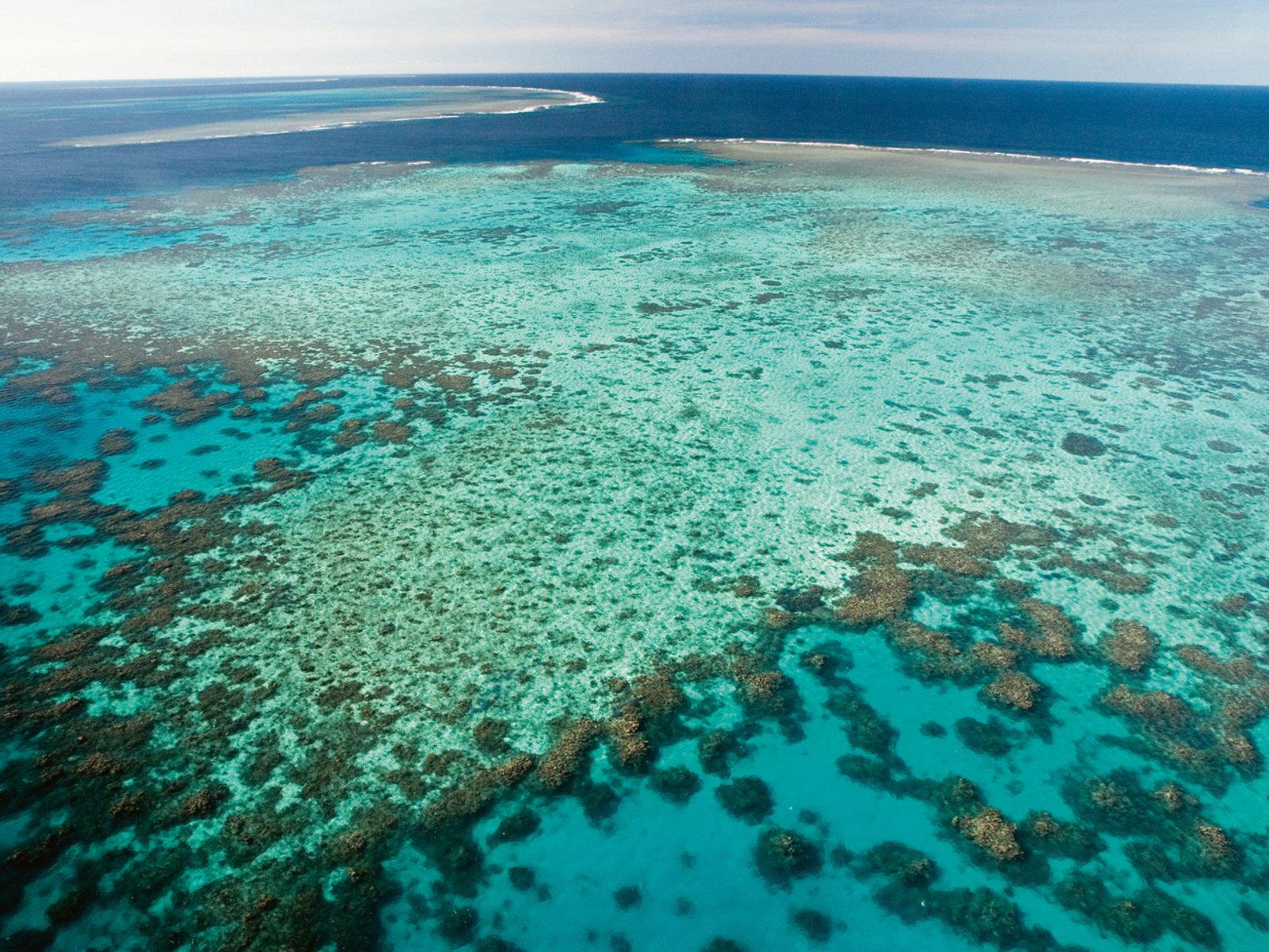 Agincourt Reef, Tourism and Events Queensland©Darren Jew