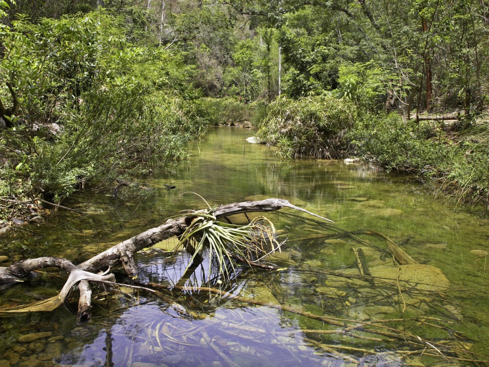 Nationalpark El Cubano, Trinidad