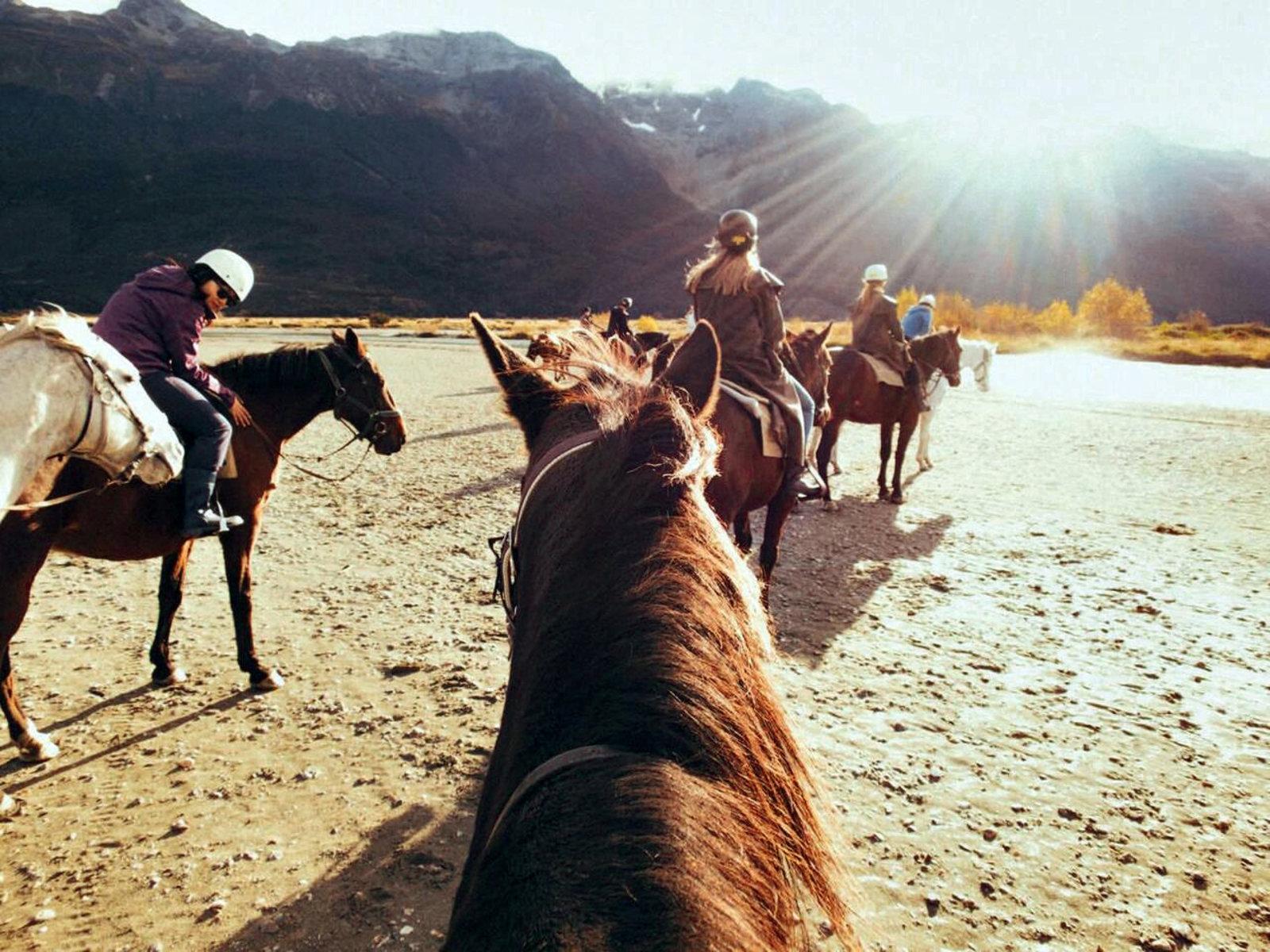 Auf dem Rücken der Pferde....