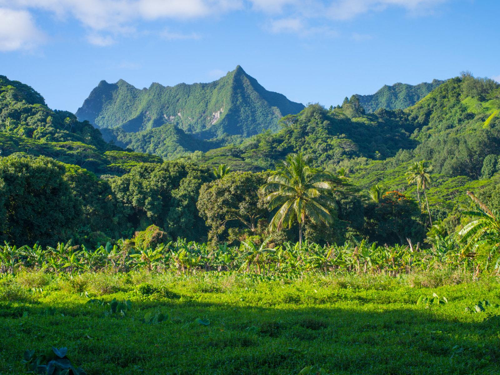Rarotonga © Cook Islands Tourism, David Kirkland
