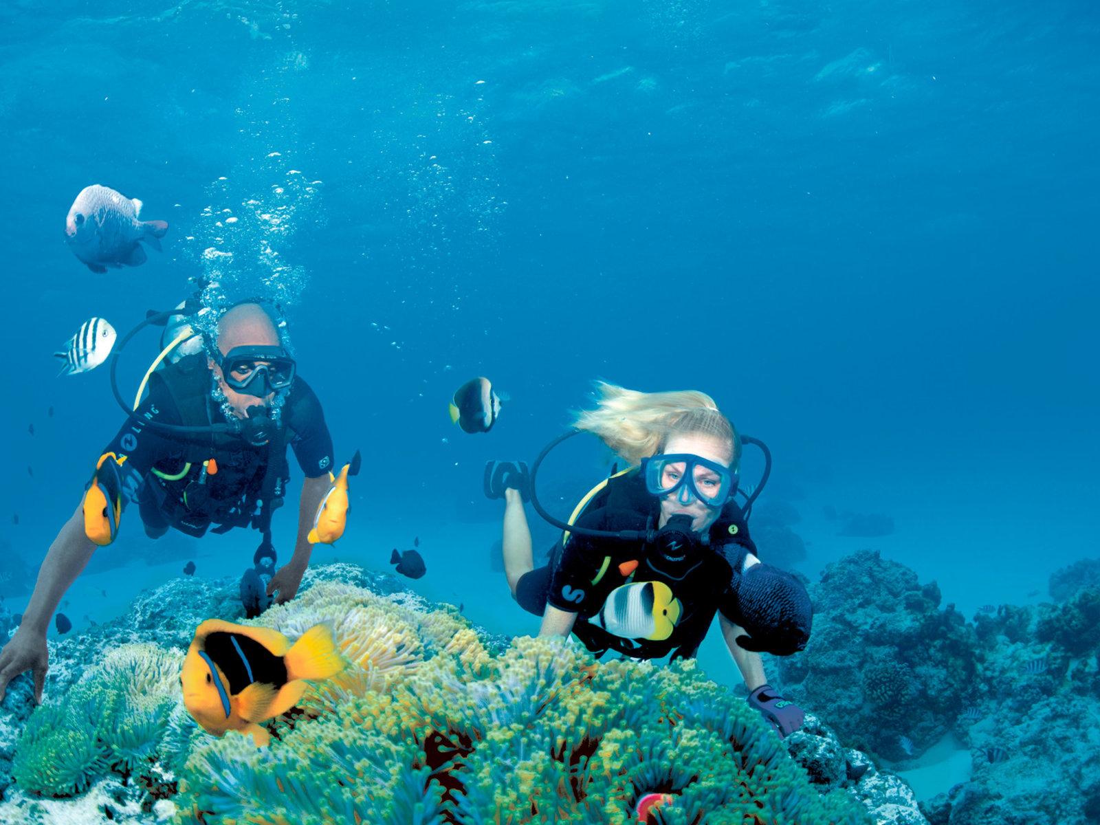 Tauchen, Bora Bora