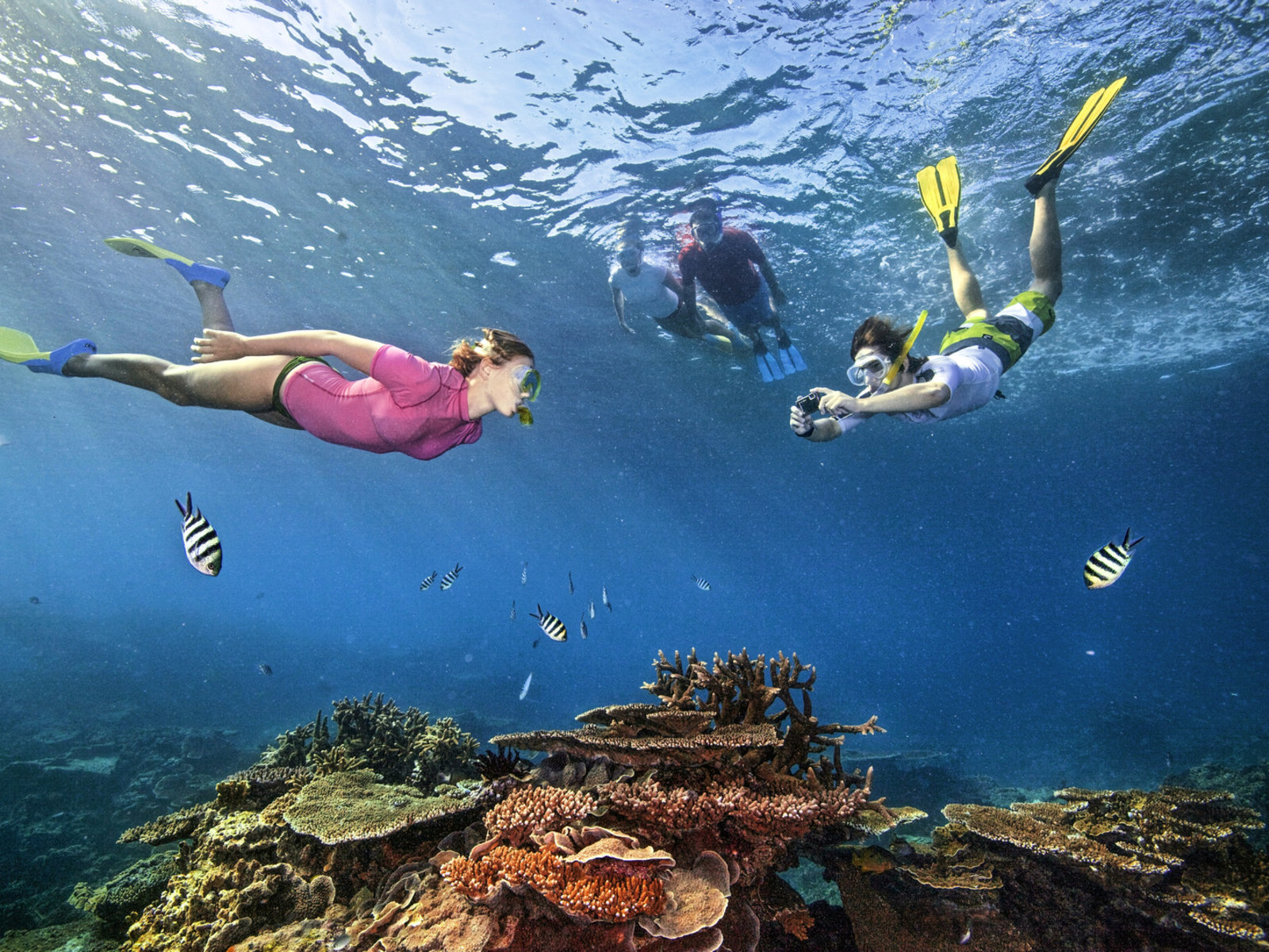 Great Barrier Reef, © Tourism Australia