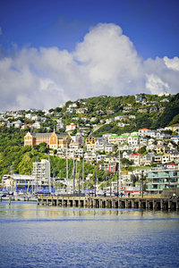Nordinsel, Wellington Blick auf Mt. Victoria©WellingtonNZ