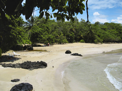 Red Frog Beach, Insel Bastimentos