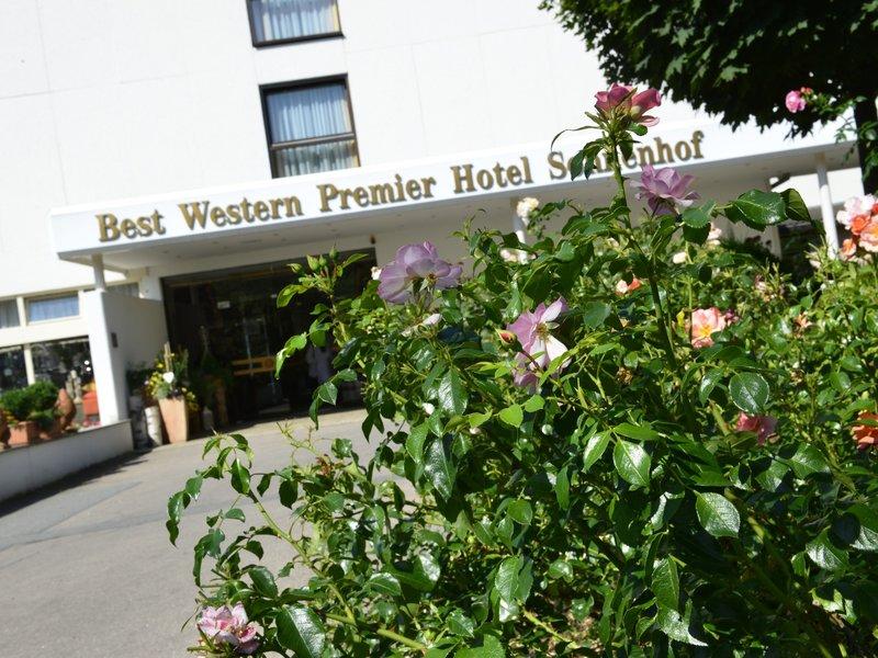 best western premier hotel sonnenhof hotelbilder best western premier hotel sonnenhof lam. Black Bedroom Furniture Sets. Home Design Ideas
